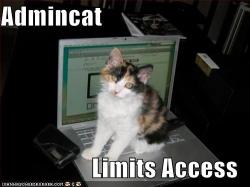 Admin Cat